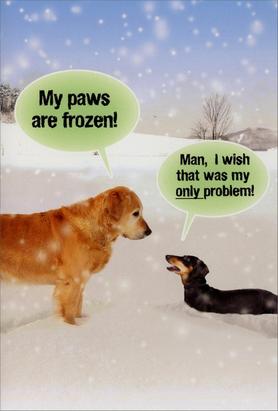 Paws are Frozen (1 card/1 envelope) Nobleworks Funny Dog Themed Christmas Card - FRONT: My paws are frozen! Man, I wish that was my only problem!  INSIDE: Warm wishes for a happy holiday.