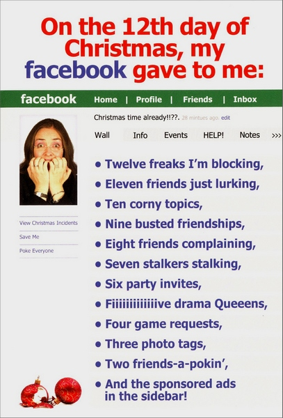 Facebook funny humorous christmas card by nobleworks m4hsunfo