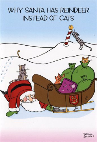 Reindeer instead of cats box of 12 funny christmas cards for Funny reindeer christmas cards
