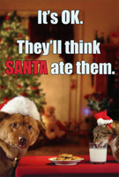 Dog and Cat Eating Santa's Cookies Christmas Card