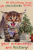 Your Ornaments Are History Kitten Christmas Card