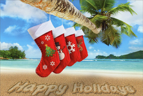 Stockings Hanging On Palm Tree Box Of 12 Warm Weather Tropical