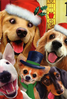 Dogs Making Silly Faces Christmas Card