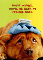 Dog Back to Normal (1 card/1 envelope) - Get Well Card - FRONT: Don't worry, you'll be back to normal soon.  INSIDE: Well, normal for you anyway. Get Well Soon!