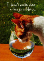 Cat in Wine Glass (1 card/1 envelope) - Birthday Card - FRONT: It doesn't matter where or how you celebrate�  INSIDE: �as long as you're hanging out with friends! Happy Birthday!