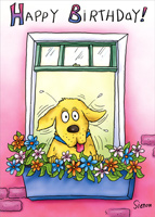 Dog Looking Out Window (1 card/1 envelope) Oatmeal Studios Funny Birthday Card