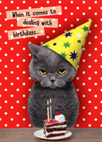 Dealing With Birthdays Cat (1 card/1 envelope) Oatmeal Studios Funny Birthday Card