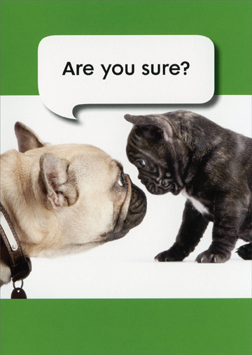 Are You Sure French Bulldogs (1 card/1 envelope) - Birthday Card - FRONT: Are you sure?  INSIDE: Relax� You're still a young pup!  Happy Birthday!
