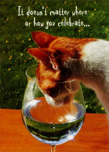 Cat In Wine Glass Funny Humorous Birthday Card By Oatmeal Studios