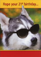 Husky with Sunglasses (1 card/1 envelope) - 21st Birthday Card - FRONT: Hope your 21st birthday�  INSIDE: �is as cool as you are!  Happy Birthday!
