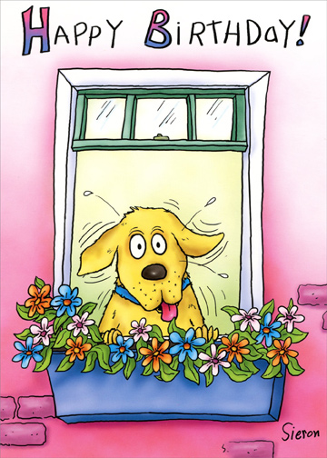 Dog Looking Out Window Funny Birthday Card Greeting Card By