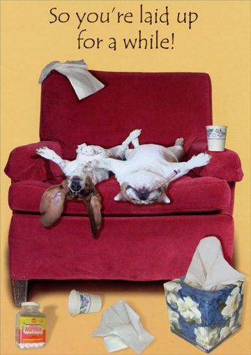 So You're Laid Up (1 card/1 envelope) Oatmeal Studios Funny Get Well Card - FRONT: So you're laid up for a while!  INSIDE: Hope you're back on your feet again real soon!