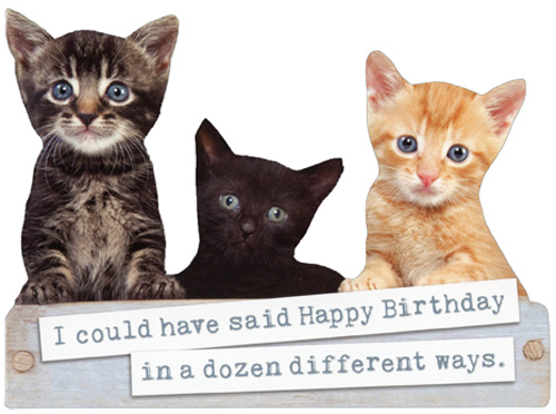 Box Of Kittens Die Cut Cute Cat Birthday Card