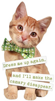 Kitten With Bow Tie Die Cut (1 card/1 envelope) Paper House Funny Cat Birthday Card