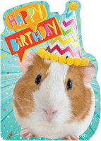 Paper House Productions - Birthday Cards