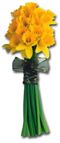 Daffodil Bouquet (1 card/1 envelope) Paper House Productions Die Cut Blank Card