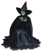 Wizard of Oz - Wicked Witch Die Cut Blank Note Card