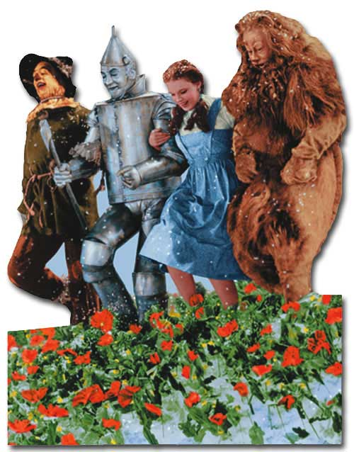 Wizard of Oz - Poppy Field Of Oz (1 card/1 envelope) - Blank Card