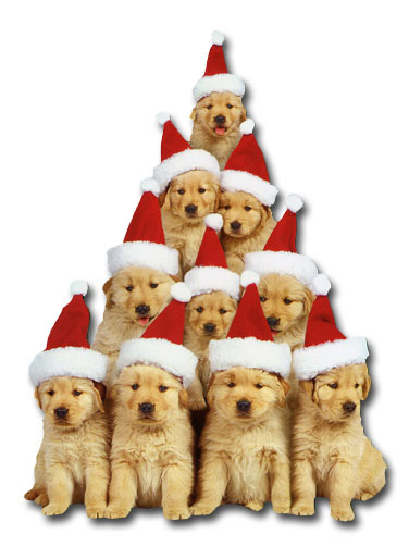 Golden Retriever Puppies Holiday (1 card/1 envelope) Paper House Productions Die Cut Dog Christmas Card  INSIDE: Love and Joy at Christmas and throughout the New Year