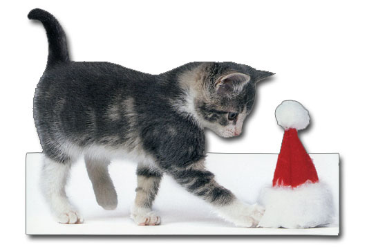 Kitten Playing W/Santa Hat (1 card/1 envelope) Paper House Productions Die Cut Cat Christmas Card  INSIDE: have a very merry christmas