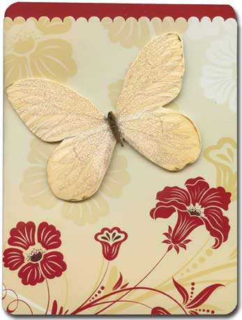 Butterfly (1 card/1 envelope) Paper House Productions Die Cut 3D Blank Card