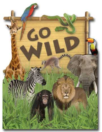 Go Wild (1 card/1 envelope) - Birthday Card - FRONT: GO WILD  INSIDE: IT'S YOUR BIRTHDAY!