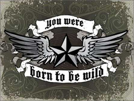 Born To Be Wild (1 card/1 envelope) Paper House Productions Die Cut 3D Birthday Card - FRONT: you were born to be wild  INSIDE: nothing's changed happy birthday