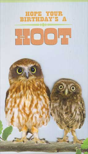 Hoot (1 card/1 envelope) Paper House Productions Die Cut 3D Birthday Card - FRONT: Hope your birthday's a HOOT  INSIDE: today, it's OWL about you!