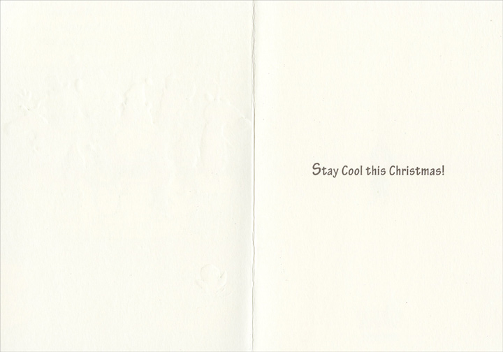 Polar Ice Cap (1 card/1 envelope) Funny Christmas Card - FRONT: Is it just me, or is the polar ice cap getting smaller?  INSIDE: Stay cool this Christmas!