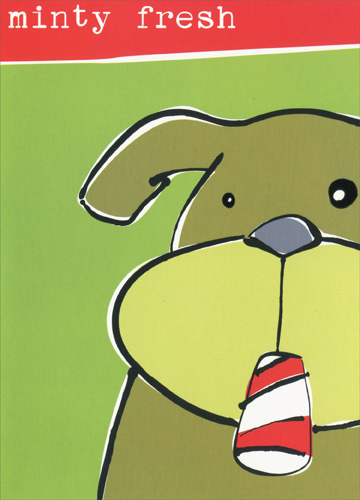 Minty Fresh Dog (18 cards/18 envelopes) Paper Magic Boxed Christmas Cards - FRONT: minty fresh  INSIDE: Merry Christmas