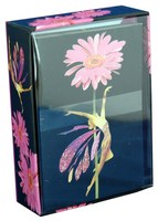 Pictura - Boxed Note Cards