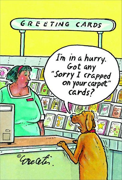 Sorry I Crapped On Your Carpet (1 card/1 envelope) Eric Decetis Funny Birthday Card - FRONT: GREETING CARDS.  I'm in a hurry. Got any �sorry I crapped on your carpet� cards?  INSIDE: Crap.. Hate to dump this on you, but you're a year older.