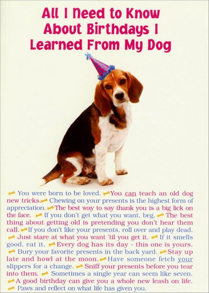All I Need From Dog (1 card/1 envelope) - Birthday Card - FRONT: All I Need To Know About Birthdays I learned From My Dog  *  You were born to be loved.  *  You can teach an old dog new tricks.  *  Chewing on your presents is the highest form on appreciation  *   The best way to say thank you is a big lick on the face.  *  If you don't get what you want, beg.  *  The best thing about getting old is pretending you don't hear them call.  *  If you don't like your presents, roll over and play dead.  *  Just stare at what you want until you get it.  *  If it smells good, eat it.  *  Every dog has its day - this one is yours.  *  Bury your favorite presents in the backyard.  *  Stay up late and howl at the moon.  *  Have someone fetch your slippers for a change.  *  Sniff your presents before you tear into them.  *  Sometimes a single year can seem like seven.  *  A good birthday can give you a whole new leash on life.  *  Paws and reflect on what life has given you.  INSIDE: And remember, as birthdays come and go�  keep that tail waggin' and have a wonderful day!  Happy Birthday!