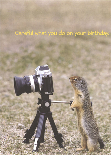 Squirrelparazzi (1 card/1 envelope) Funny Portal Birthday Card - FRONT: Careful what you do on your birthday.  INSIDE: Everyone's uploading photos onto the Internet these days.
