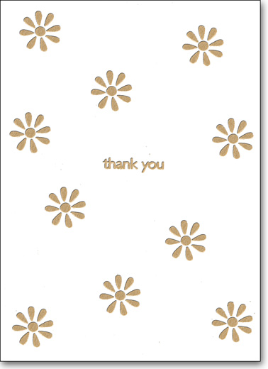 Daisy Splash (25 Cards/28 Envelopes) Boxed Thank You Note Cards - FRONT: Thank You  INSIDE: Blank Inside