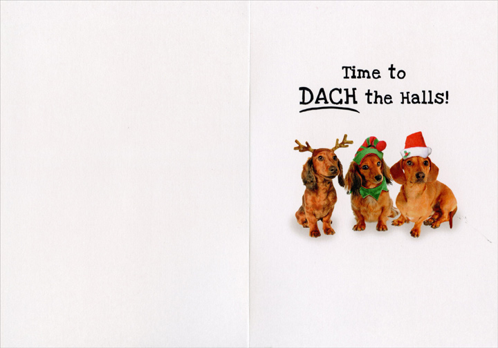 Dach the Halls (1 card/1 envelope) Recycled Paper Greetings Funny Christmas Card - FRONT: It's Christmas  INSIDE: Time to DACH the Halls!