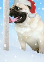 Pug Frozen to Pole (1 card/1 envelope) Recycled Paper Greetings Funny Christmas Card