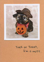 Trick or Treat Mutt (1 card/1 envelope) RPG Funny Halloween Card