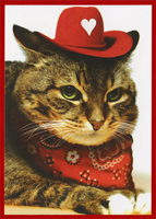 Valentine Cowboy Cat (1 card/1 envelope) Recycled Paper Greetings Funny Valentine's Day Card