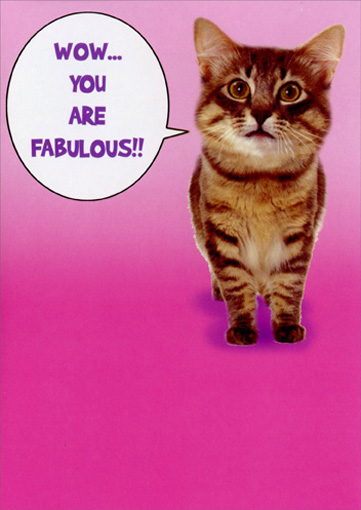 You are Fabulous (1 card/1 envelope) Funny Mother's Day Card - FRONT: Wow..You are fabulous!!  INSIDE: A quick cat scan reveals you're the best mom ever!  Happy Mother's Day