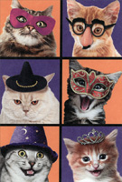 Six Cats (1 card/1 envelope) Recycled Paper Greetings Halloween Card