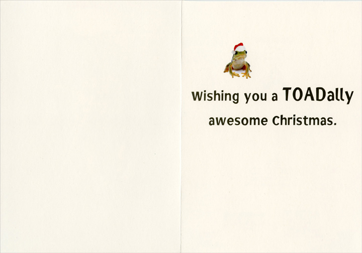 Toadally Merry (1 card/1 envelope) - Christmas Card - FRONT: No Text  INSIDE: Wishing you a TOADally awesome Christmas.