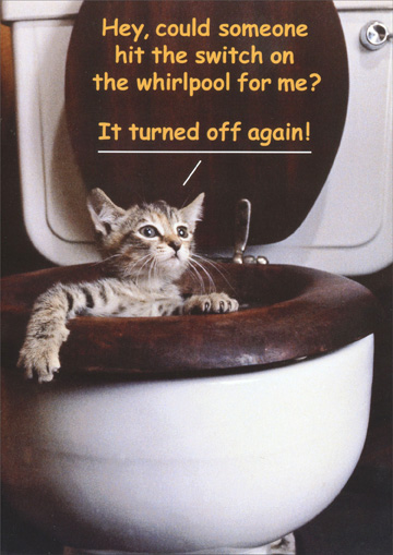 Cat/Whirlpool (1 card/1 envelope) - Birthday Card - FRONT: Hey, could someone hit the switch on the whirlpool for me?  It turned off again!  INSIDE: It's your birthday - time to kick back and relax.