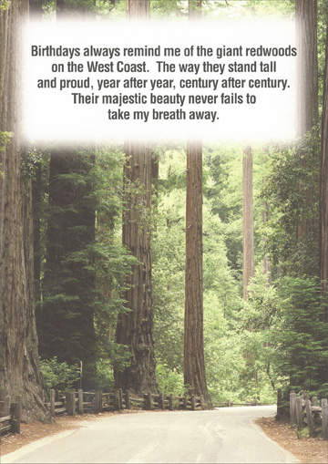 Giant Redwood Trees (1 card/1 envelope) - Birthday Card - FRONT: Birthdays always remind me of the giant redwoods on the West Coast.  The way they stand tall and proud, year after year, century after century.  Their majestic beauty never fails to take my breath away.  INSIDE: Thank you for planting them.  Happy Birthday