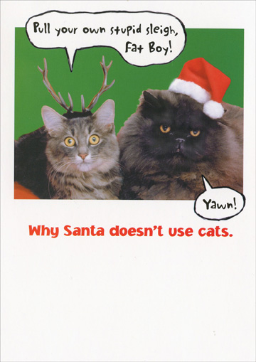 Santa Cats (1 card/1 envelope) - Christmas Card - FRONT: Pull your own stupid sleigh, Fat Boy!  Yawn!  Why Santa doesn't use cats.  INSIDE: Merry Christmas