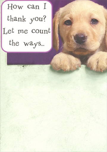 Lab Pup Thank You (1 card/1 envelope) Recycled Paper Greetings Funny Dog Thank You Card - FRONT: How can I thank you?  Let me count the ways..  INSIDE: ..this is when fingers would come in handy.