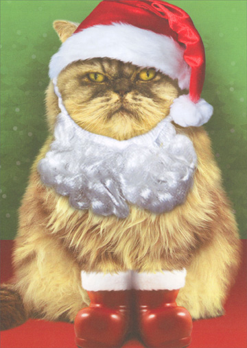 Grumpy Cat in Santa Suit (1 card/1 envelope) Recycled Paper Greetings Christmas Card  INSIDE: Yeah� Ho-Ho-Freakin-Ho!  Merry Christmas