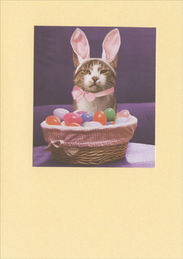 Cat Dressed with Bunny Ears (1 card/1 envelope) Recycled Paper Greetings Funny Cat Easter Card  INSIDE: Yeah� Happy Frickin' Easter!
