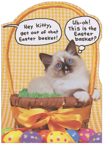 Kitten in Easter Basket (1 card/1 envelope) Recycled Paper Greetings Funny Cat Easter Card - FRONT: Hey kitty, get out of that Easter basket! Uh-oh! This is the Easter basket?  INSIDE: Hope your Easter has only pleasant surprises.