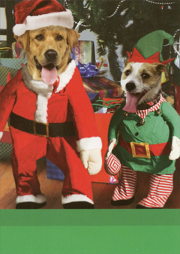 Santa Paws (1 card/1 envelope) Recycled Paper Greetings Funny Christmas Card  INSIDE: Merry Christmas from Santa Paws and his Little Yelper!